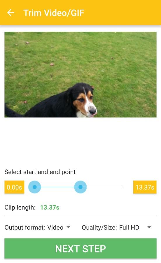 Video & GIF Memes - Imagem 1 do software