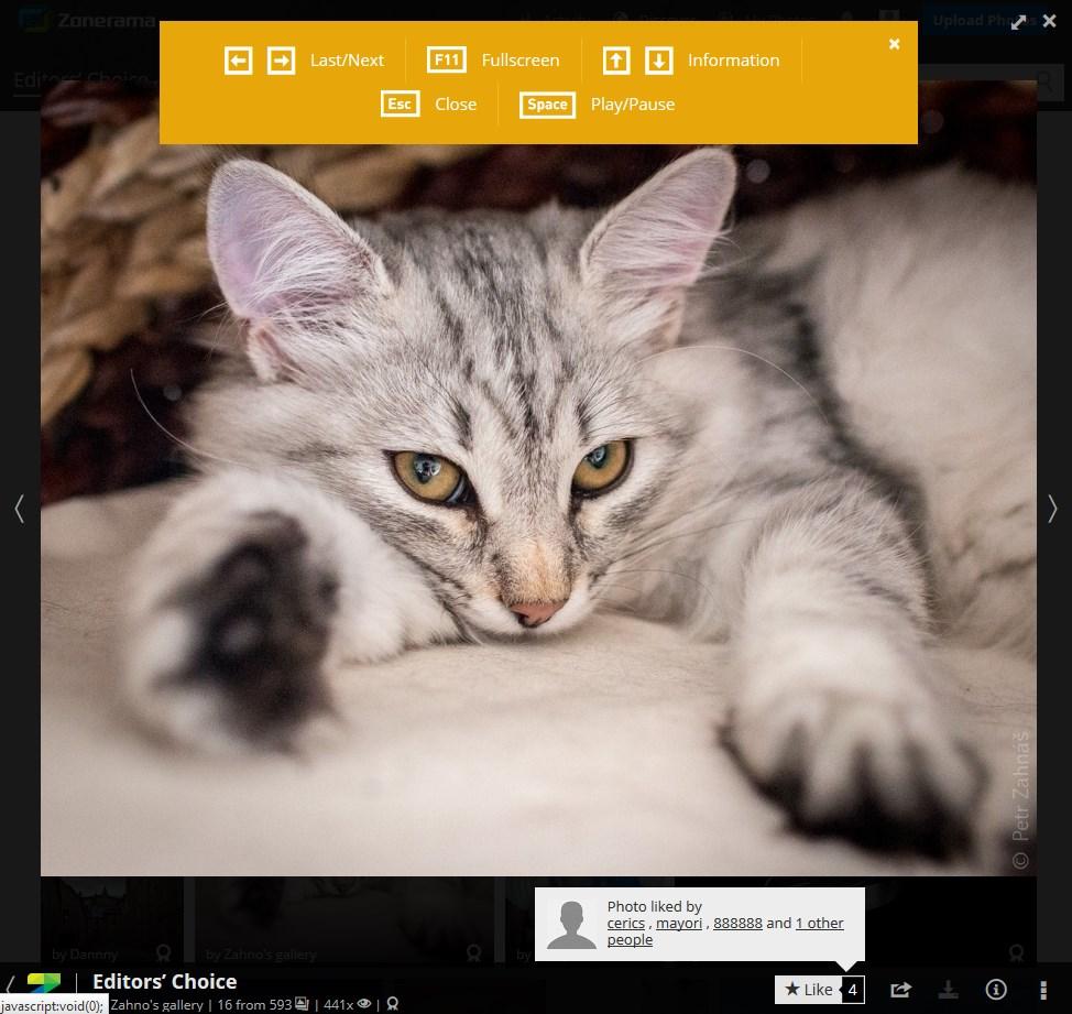 Zonerama - Imagem 2 do software