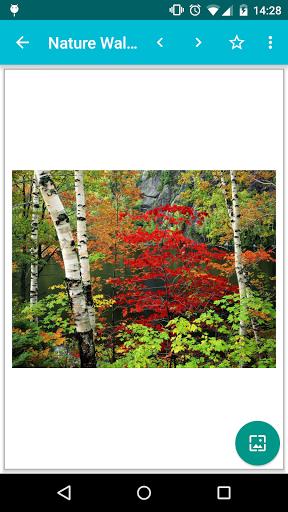 Nature Wallpapers! - Imagem 1 do software