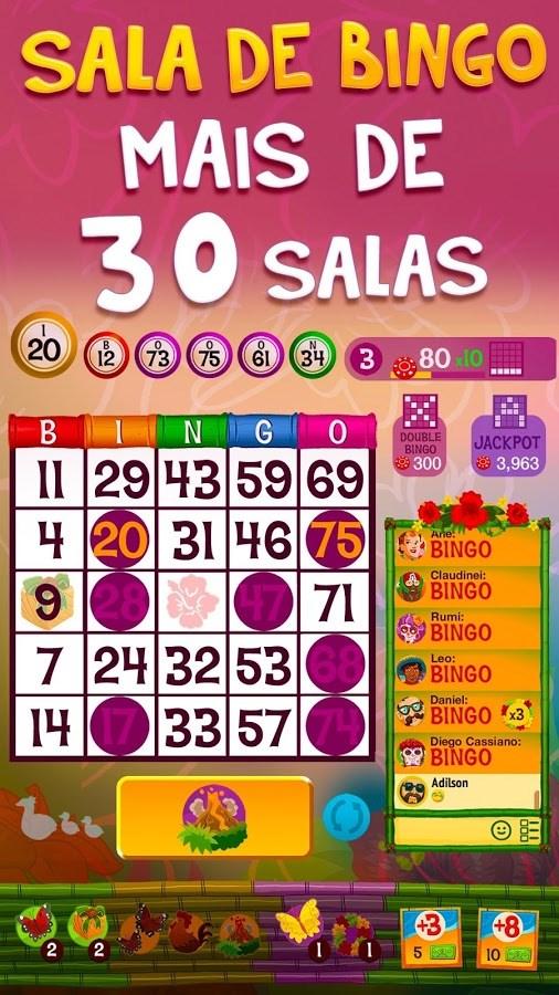 Praia Bingo - Imagem 2 do software