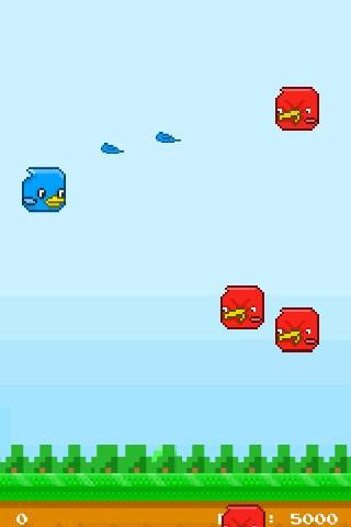 Kooky Birds - Imagem 1 do software