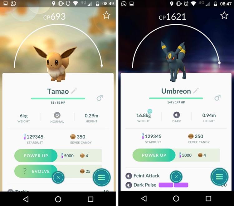 how to evolve eevee into umbreon in pokemon go