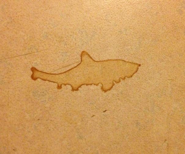 Mancha em forma de tubarão