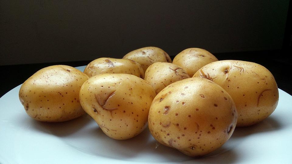 Várias batatas