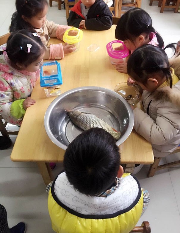 Crianças com peixes