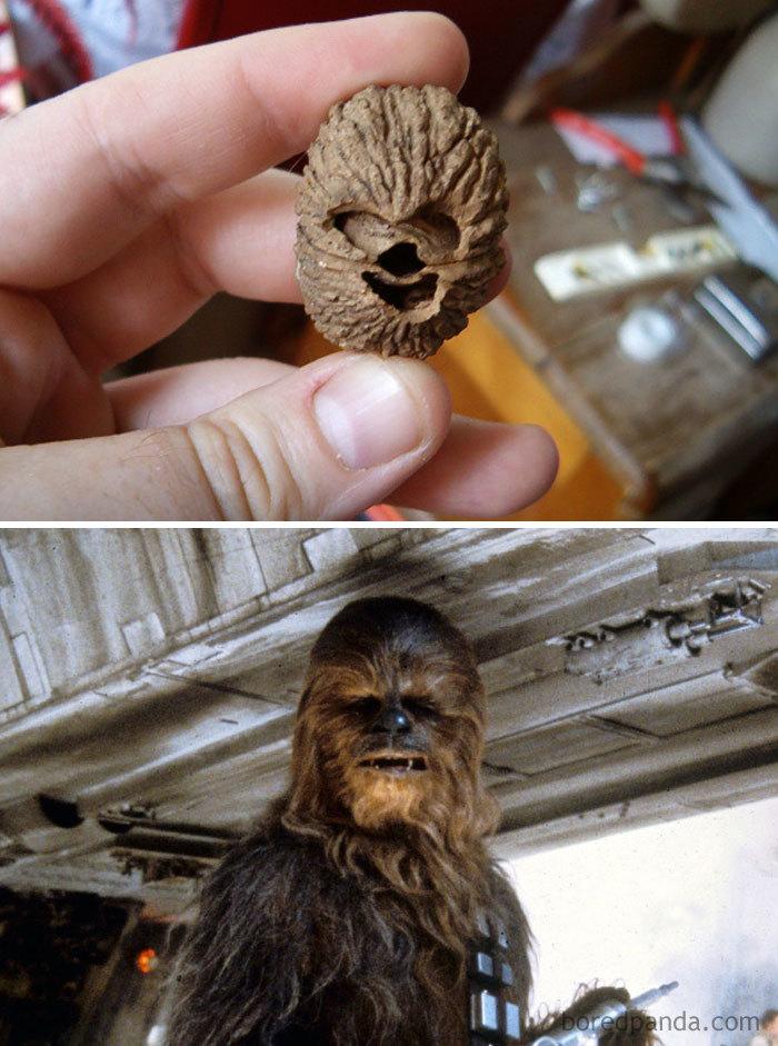 Noz igual Chewbacca