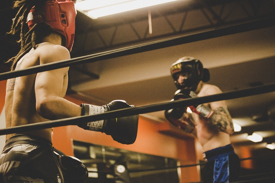 Homens num ringue de boxe