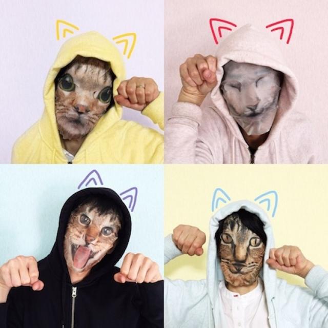 fantasia de gato
