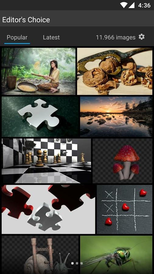 Pixabay - Imagem 2 do software