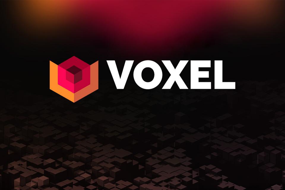 Voxel, NZN, Logo
