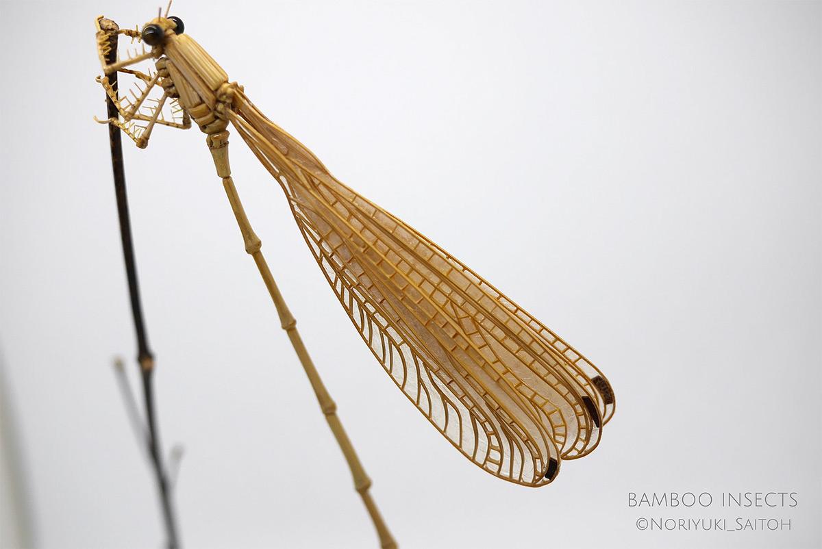 Inseto de bambu