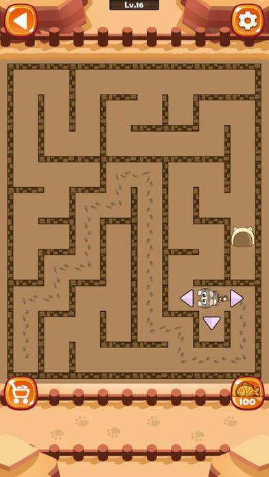 Maze Cat - Rookie - Imagem 2 do software