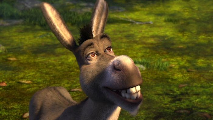 Burro do Shrek