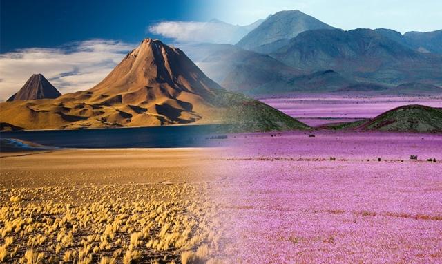 Chuva no deserto