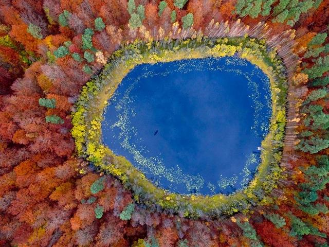 Pomerânia, na Polônia