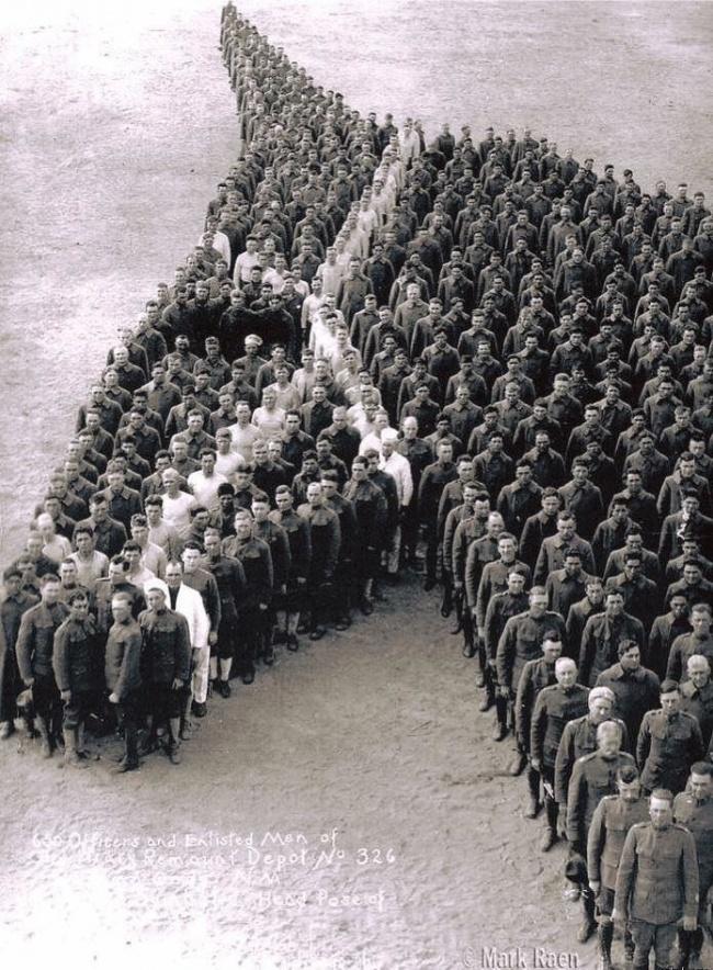 homenagem a cavalos