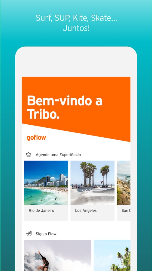 Goflow - Imagem 1 do software