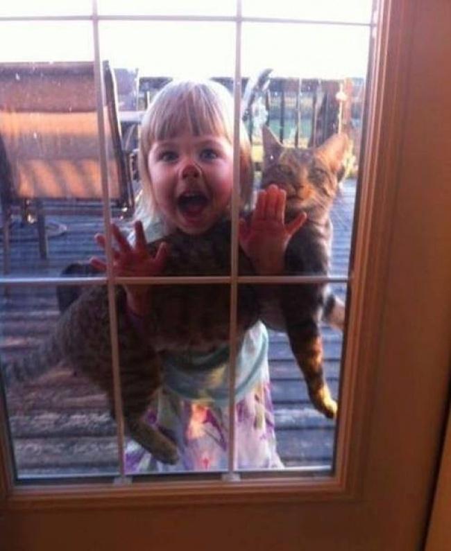 crianças e bichos de estimação