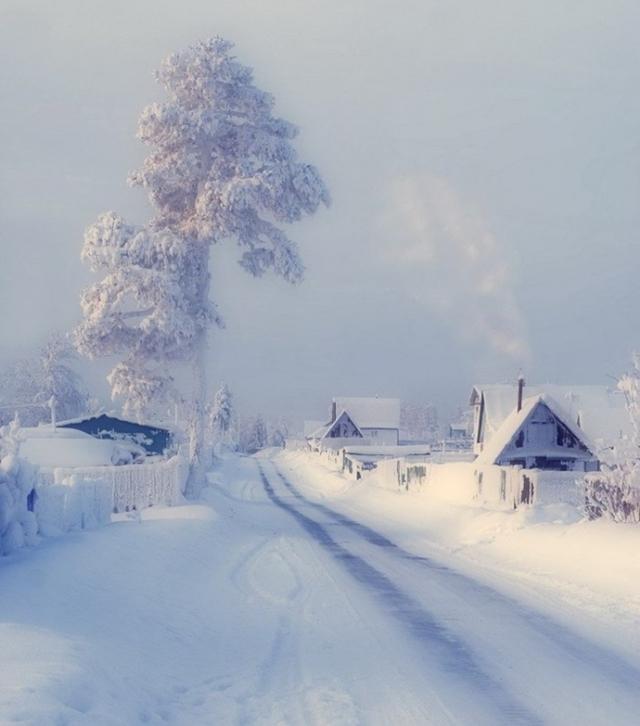 gélido inverno