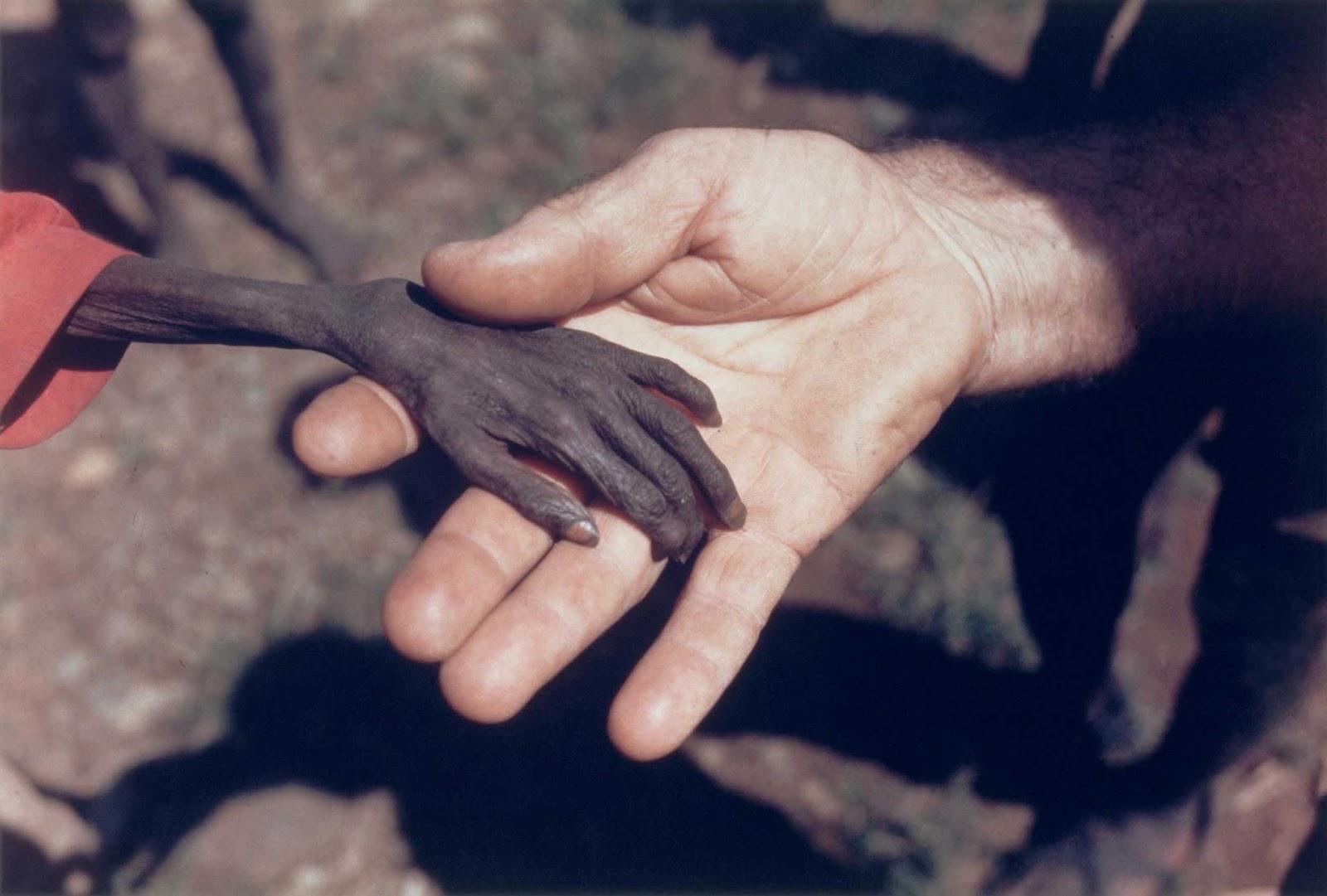 Menino faminto e missionário