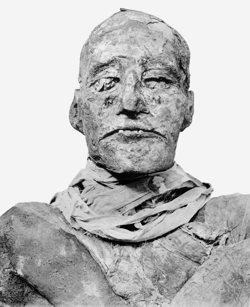 Múmia de Ramsés III