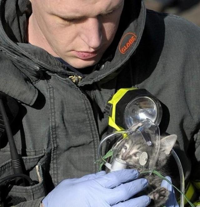bombeiro que o salvou