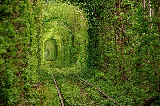 Túnel do Amor, na Ucrânia