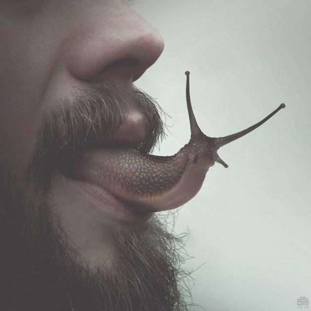 Língua de caracol