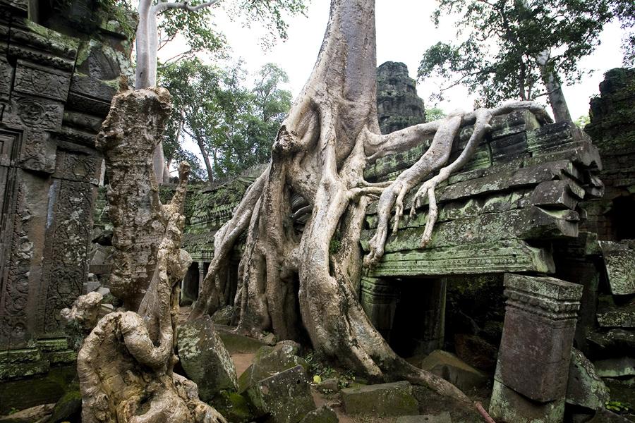 Templo no Camboja