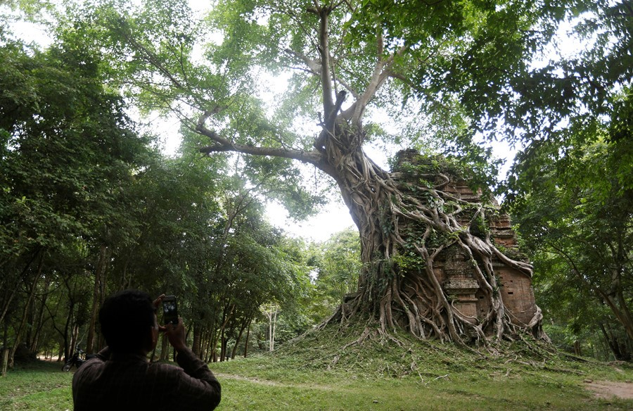 Templo tomado pela natureza