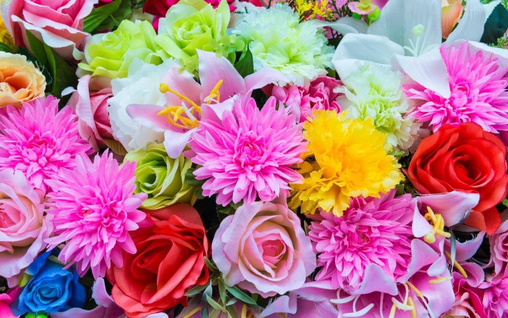 Muitas flores coloridas