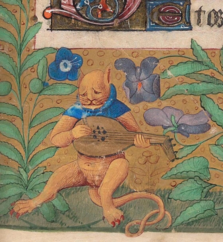 Gato tocando o alaúde
