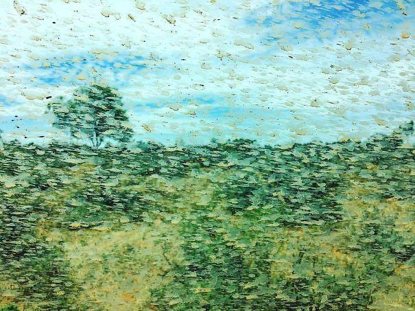 Não é um Monet