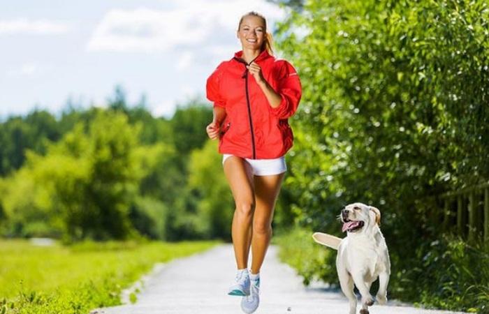 Cão e seu personal trainer