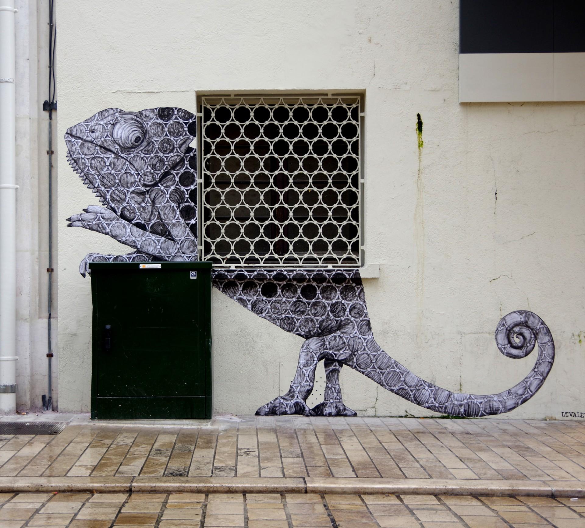 Camaleão urbano