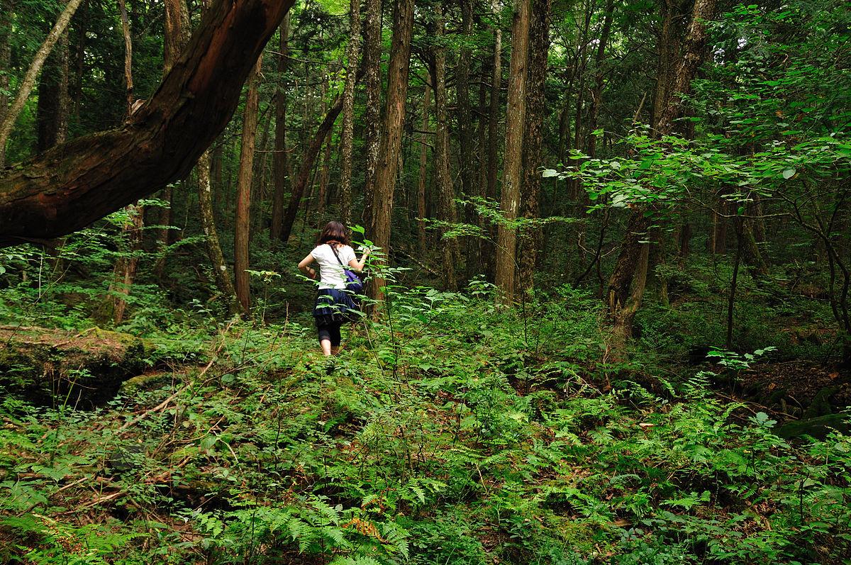 Floresta dos suicidas