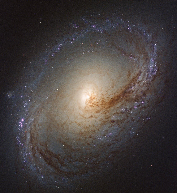 Galáxia linda