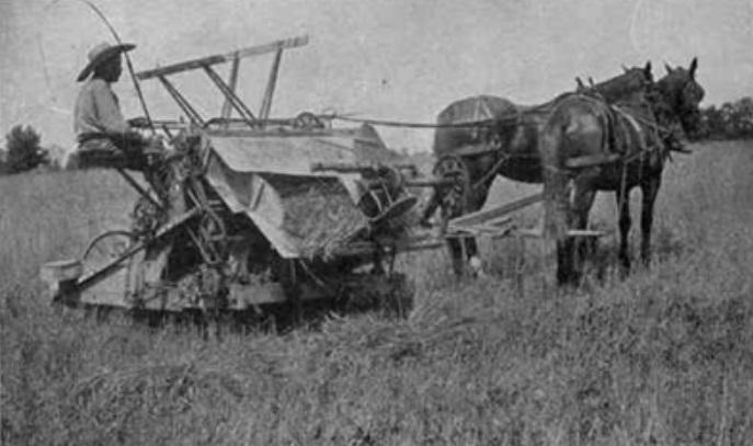 Uma colheitadeira.