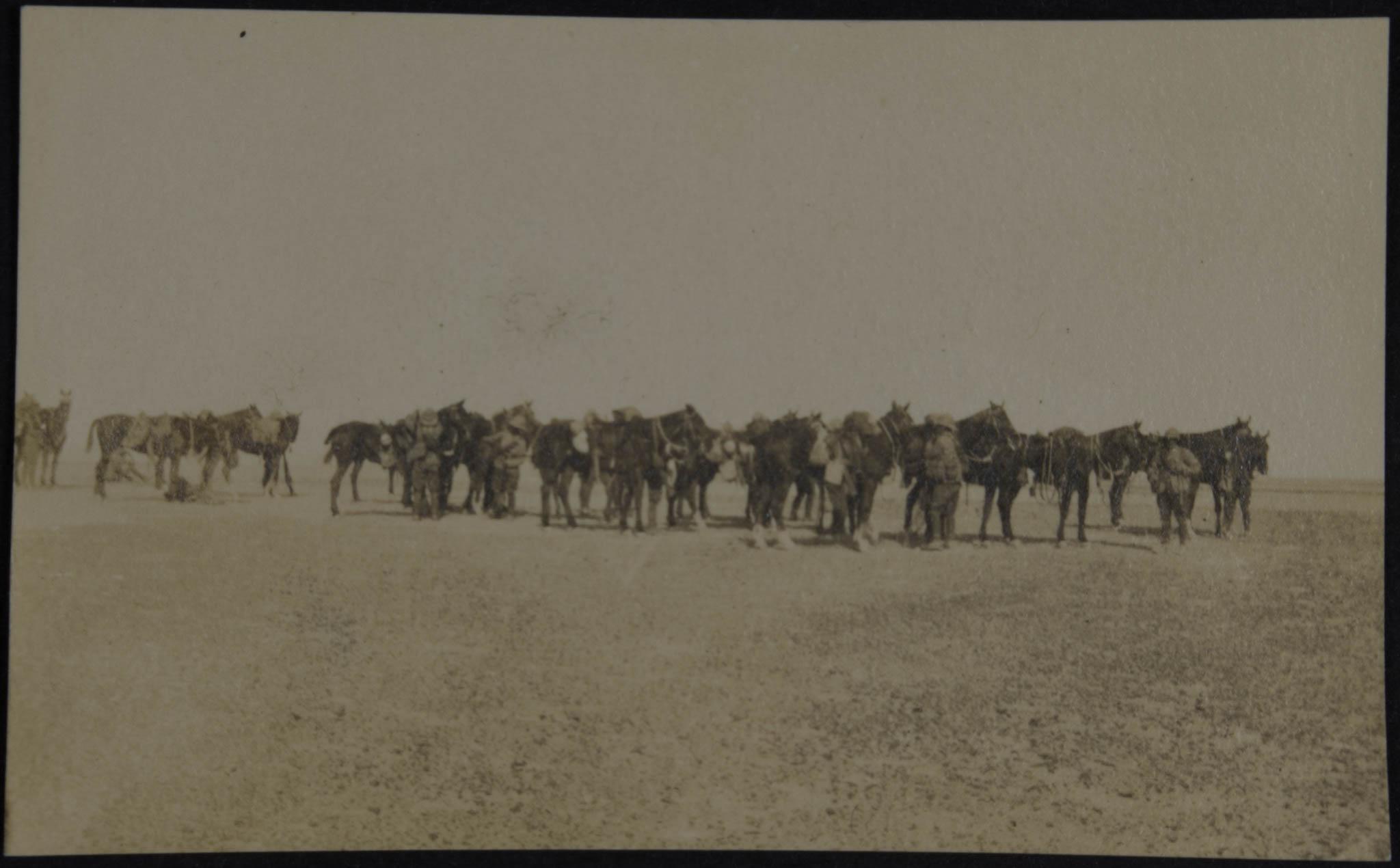 Militares no deserto