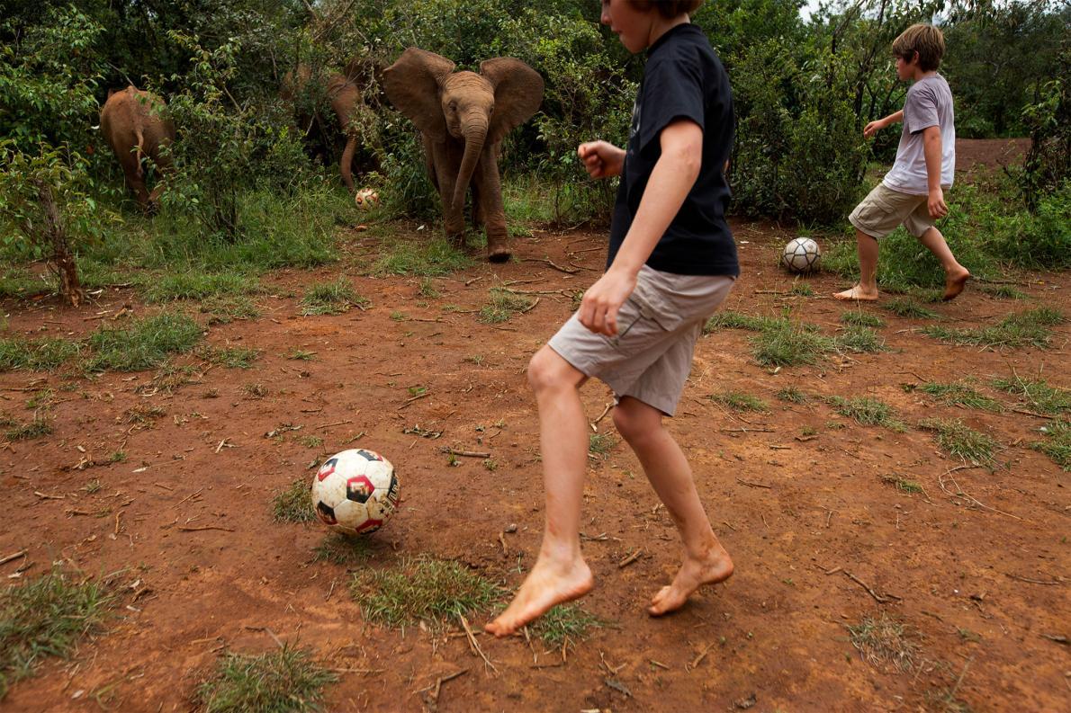Futebol com elefantes