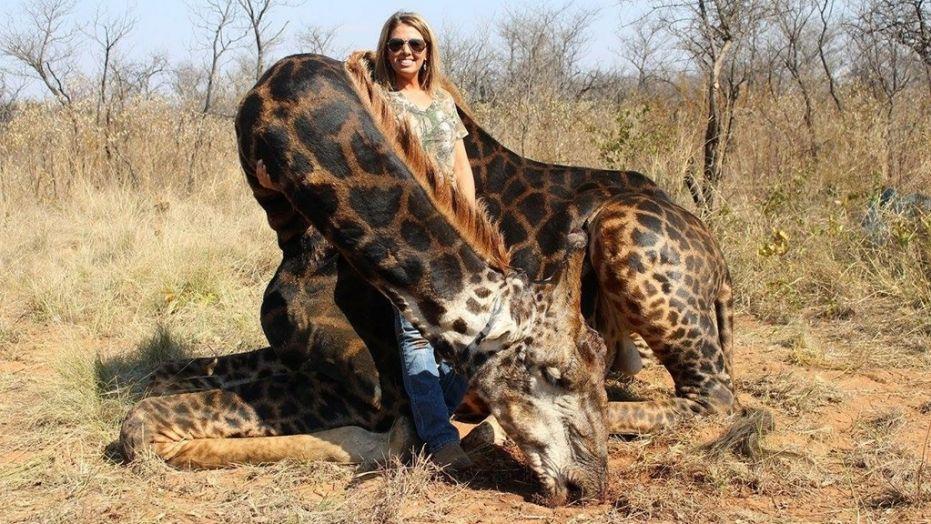 Caçadora com girafa abatida