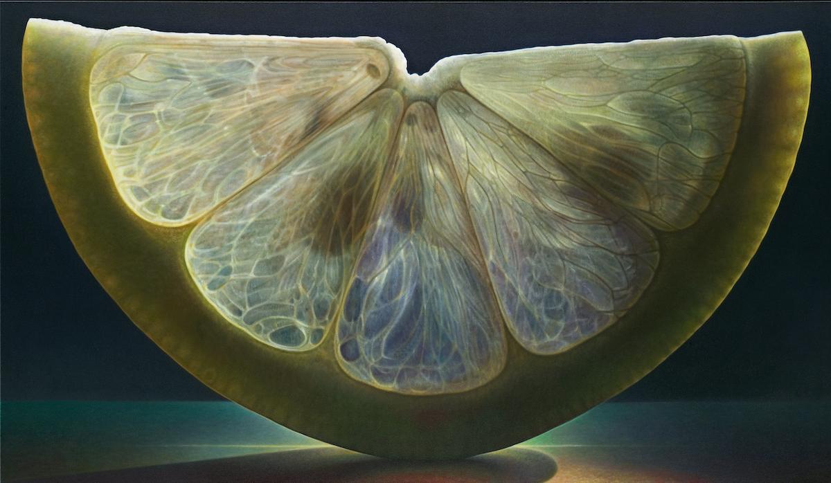 Fatia de fruta