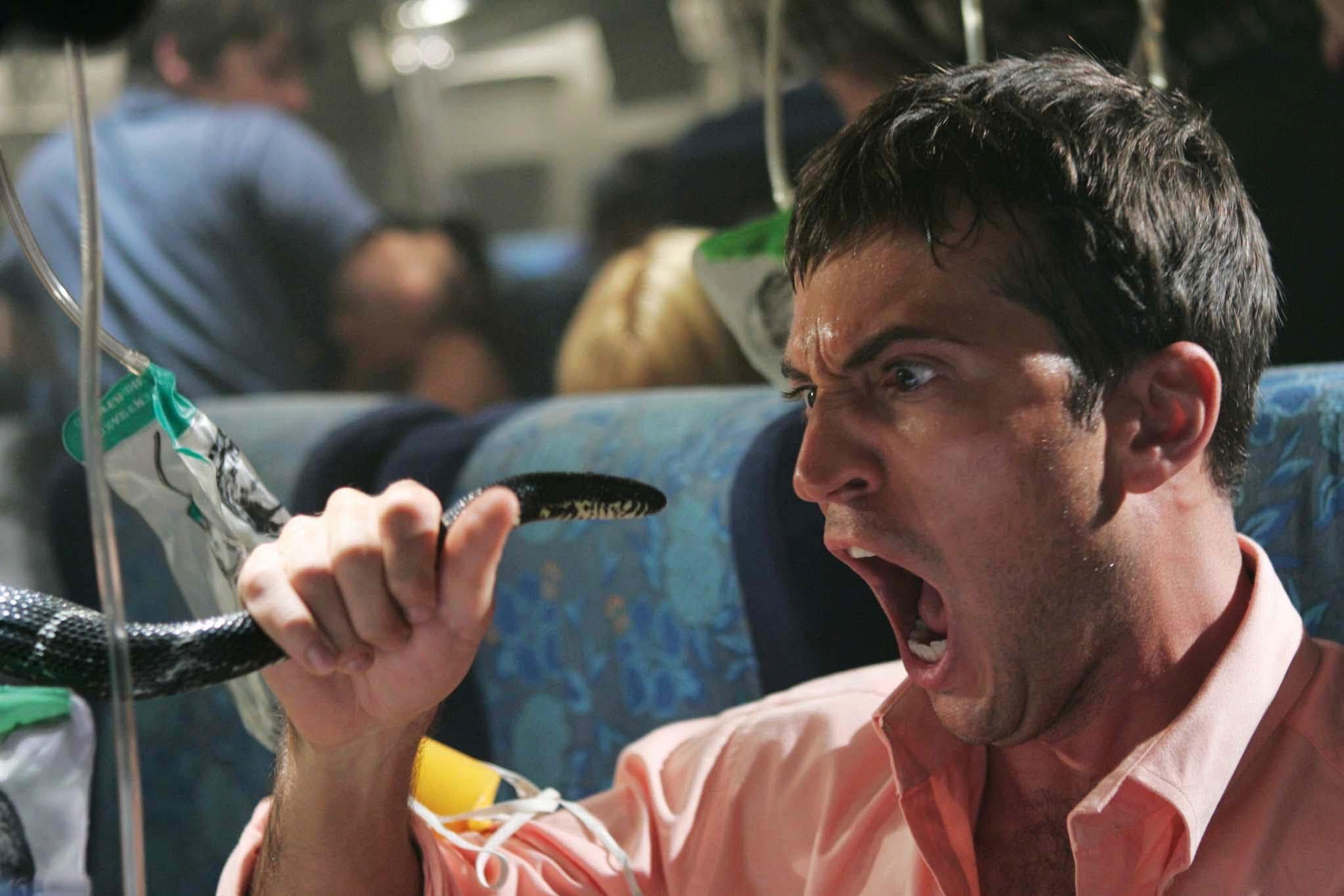 Homem descobre cobra em avião