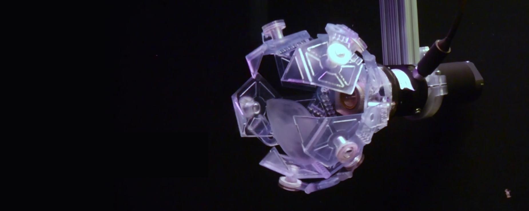 Imagem de: Armadilha-origami é feita em impressora 3D para não machucar invertebrados