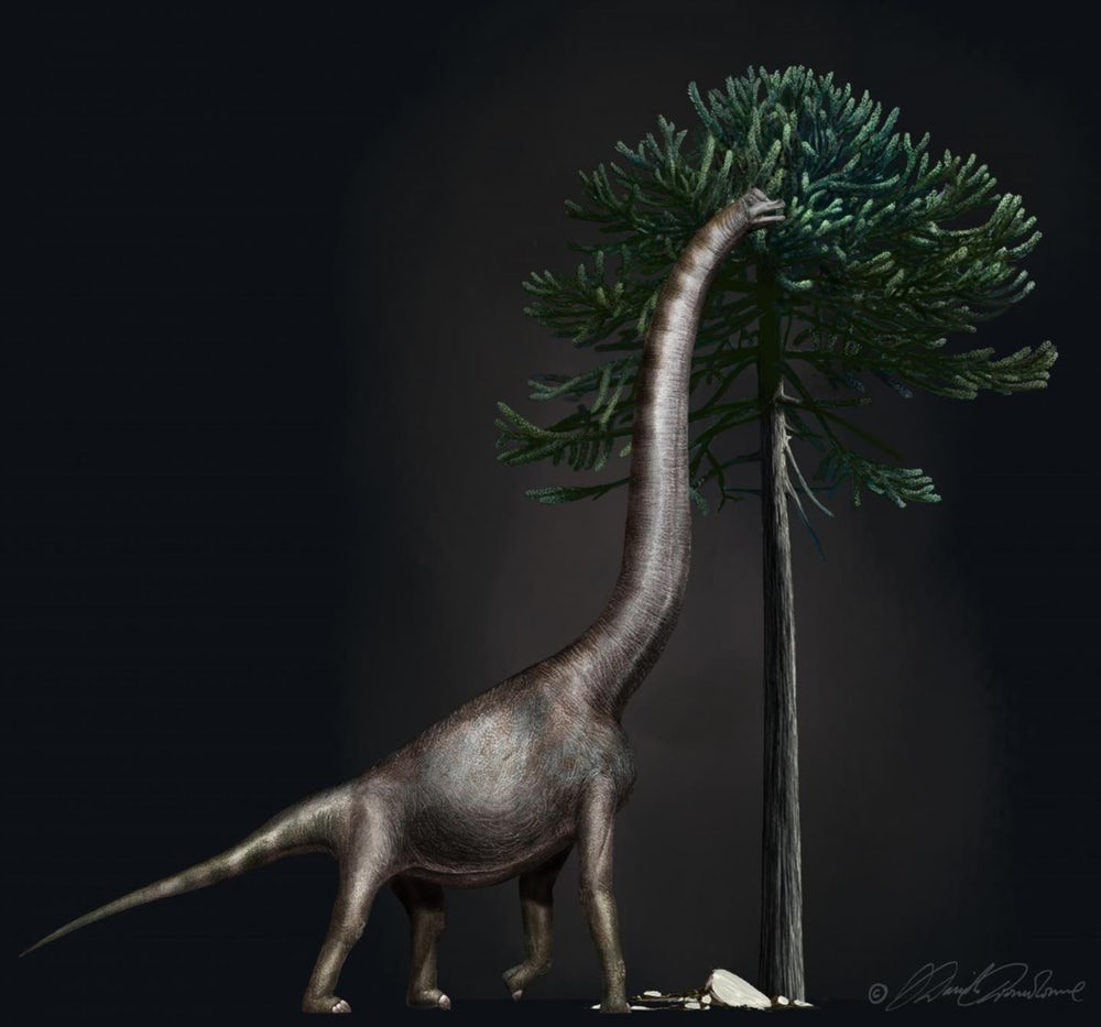 Dinossauro gigante