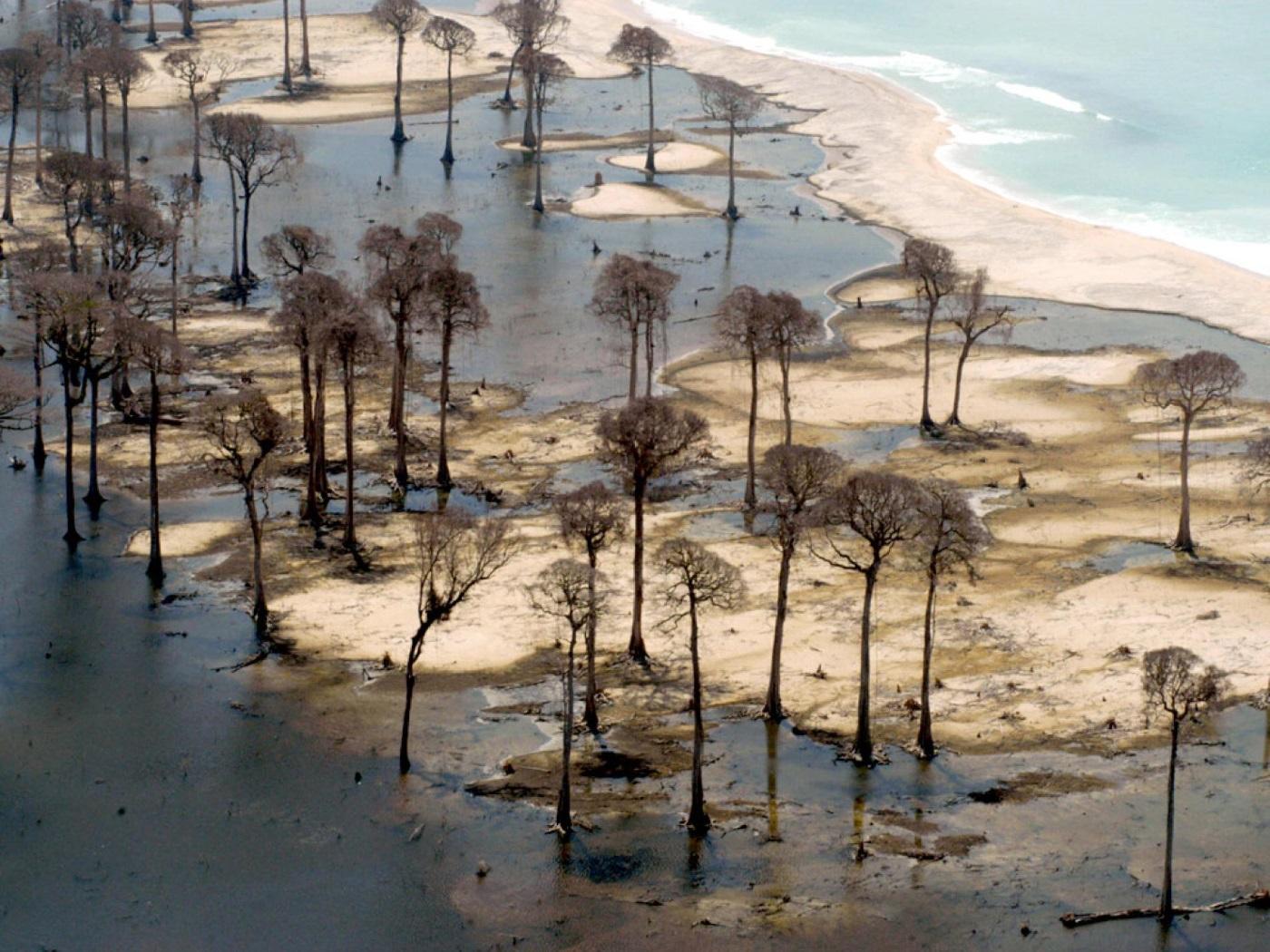 Região devastada por tsunami