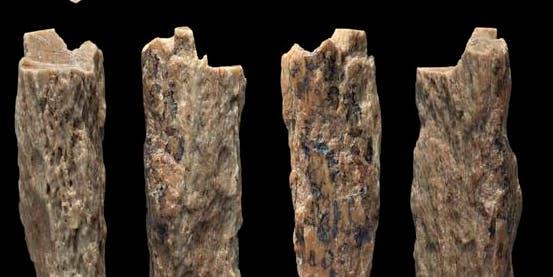 Fragmentos de ossos