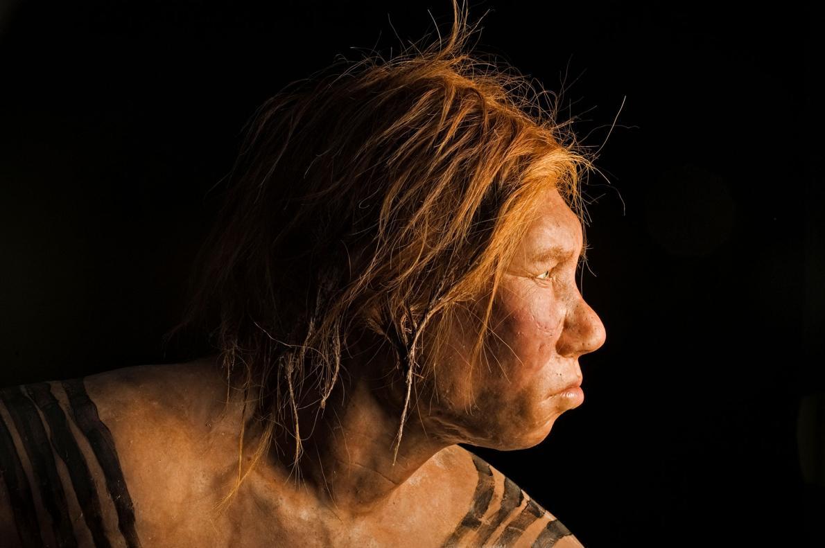 Mulher neandertal