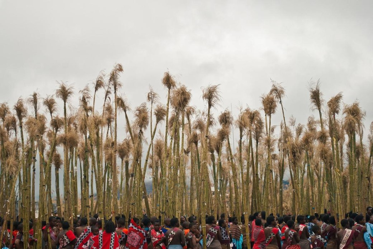 Festividade africana