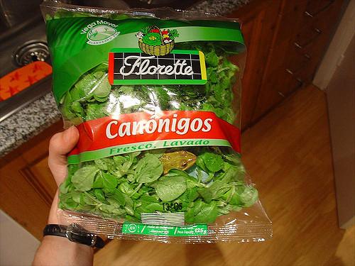 Sapo no pacote de verdura